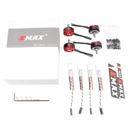 COMBO FPV EMAX RS2205S